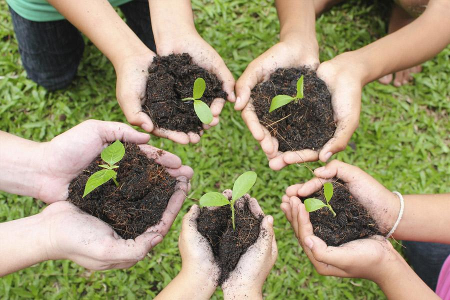 Environmental Initiatives